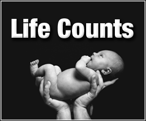 lifecounts